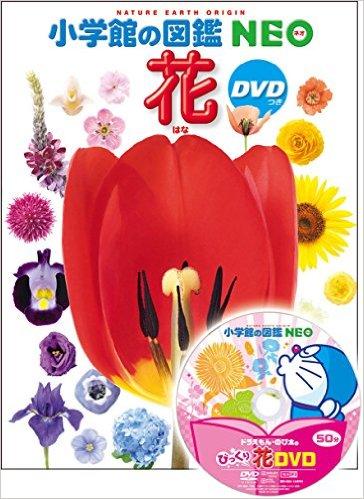 小学館の図鑑NEO DVDシリーズ